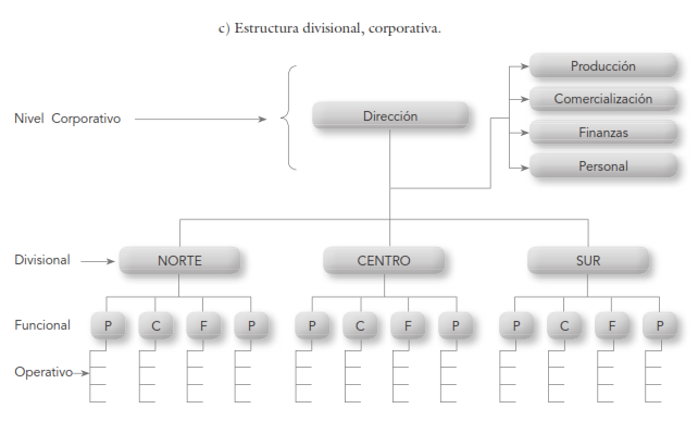 Estructura Jerárquica Organizacional Niveles De